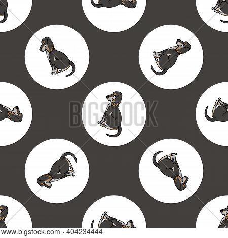 Hand Drawn Cute Saluki Dog Breed In Polka Dot Seamless Vector Pattern. Purebred Pedigree Sighthound
