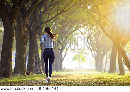 Rear View Of Young Woman Running In The Forest On  Foggy At  Morning
