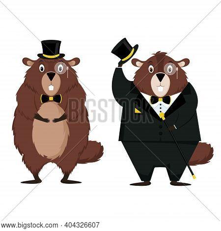 Happy Groundhog Day. A Set Of Elegant Groundhog In A Tuxedo.