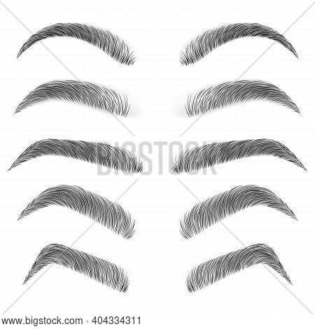 Various Types Of Eyebrows. Fashion Eyebrows Of Various Shapes And Types. Black Eyebrow Pack. Black E