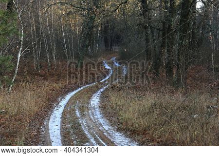 Frosted rut road in autumn forest