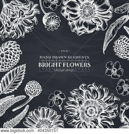 Floral Design With Chalk Poppy Flower, Gerbera, Sunflower, Milkweed, Dahlia, Veronica Stock Illustra