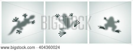 Diffuse Reptiles Silhouettes Shadow Abstract Vector Images Set. Toad, Frog, Lizard, Gecko Or Chamele