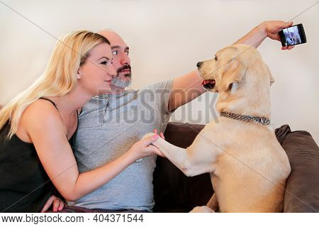 Couple With Dog At Home. Lovers Happy Handsome Couple Is Making Selfie And Enjoy With Their Yellow L