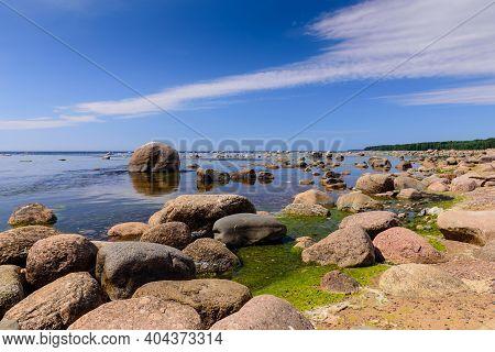 Baltic Sea Coast. Gulf Of Finland Coast, Leningrad Region, Russia