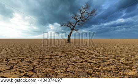 Concept or conceptual desert landscape with a parched tree as a metaphor for global warming and climate change. A warning for the need to protect our environment and future 3d illustration