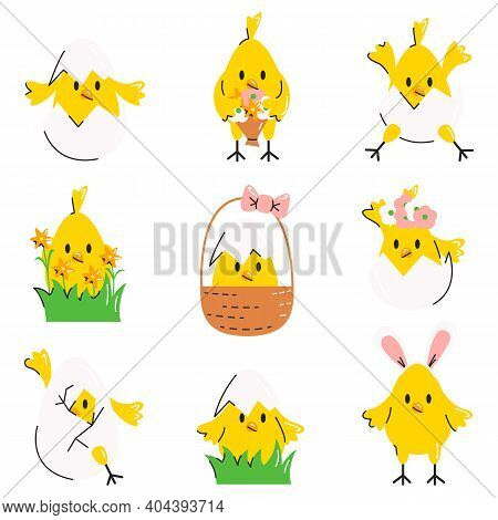 Funny Cute Easter Chicks, Eggs, Flowers And Basket. Collection Of Little Chicken In Different Poses.