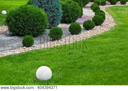 Landscaping Of Garden With Wave Ornamental Growth Cypress Bushes By Stone Mulch Way On A Day Summer