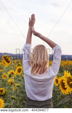 Happy Adult Blonde Girl In A White Shirt And Green Jeans In The Middle Of A Field Of Yellow Sunflowe