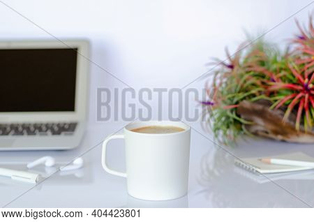 A Cup Of Coffee On Office Table With Air Plant Tillandsia And Modern Office Stationery.
