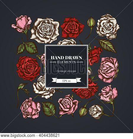 Square Floral Design On Dark Background With Roses Stock Illustration
