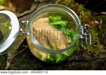 Recipe For Spruce Needles Syrup, Which Is Layered With Cane Sugar In A Retro Closing Glass Placed On