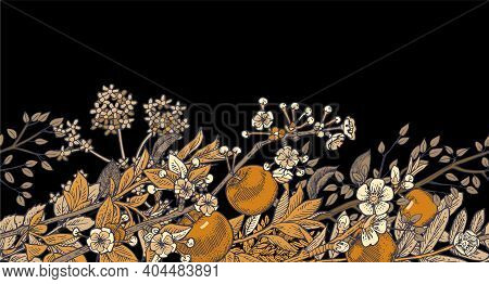 Apple Flowers. Background Illustration. Seamless. Hand Drawing Outline. Flowering Of Garden Plants.