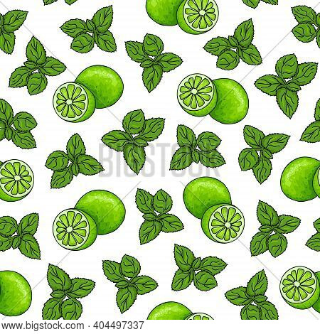 Seamless Pattern Of Mojito Ingredients. Mint Leaves And Green Lime On A White Background. Hand Drawi