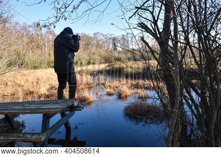 Photographer In A Fall Colored And Sunlit Marshland