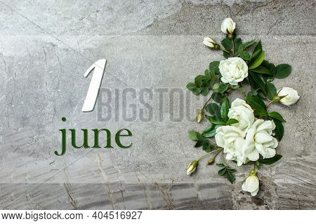 June 1st . Day 1 Of Month, Calendar Date. Stylish Roses Flat Lay. White Roses Border On Pastel Grey