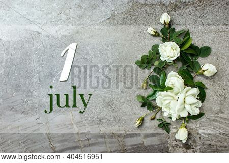 July 1st . Day 1 Of Month, Calendar Date. Stylish Roses Flat Lay. White Roses Border On Pastel Grey
