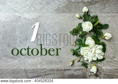 October 1st . Day 1 Of Month, Calendar Date. Stylish Roses Flat Lay. White Roses Border On Pastel Gr