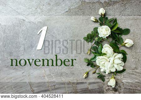 November 1st . Day 1 Of Month, Calendar Date. Stylish Roses Flat Lay. White Roses Border On Pastel G