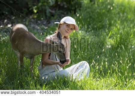 Woman Feed Fawn Deer. Unity With Nature. Wild Animals Concept. Girl Feeding Bambi. Animal At Park