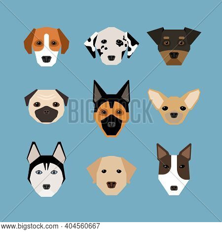 Dogs In Flat Style. Pet And Pedigree, Watchdog And Dalmatians, Shepherd And Pug, Vector Illustration
