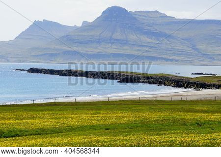 The View Of Green Landscape, Rock Formations And Cliffs By The Ocean Near East Fjords, Iceland In Th