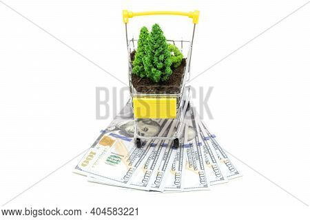Toy Shopping Cart With Soil And Toy Trees Standing On Dollar Bills Isolated On White. Illegal Loggin