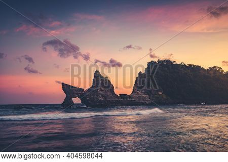 Indonesia sunrise ocean rock rainforest: tropical trees, grass on cliff at sea bay an summer morning. Pink clouds on sky at sun rise. Nature beauty with green hill landscape at Wild Sumba Island, Asia