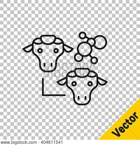 Black Line Cloning Icon Isolated On Transparent Background. Genetic Engineering Concept. Vector