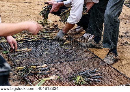 Man's Hands, Holding Grilled Spring Onion, Ready For Sale And Eat. Holiday Of Spring Onion In Spain.