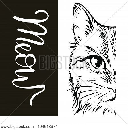 Head Of Cat With Hand Lettering Word \'meow\' On White Background. Vector Illustration.