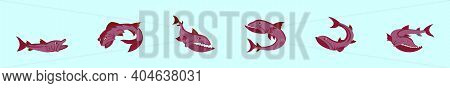 Set Of Barracuda Fish Cartoon Icon Design Template With Various Models. Modern Vector Illustration I