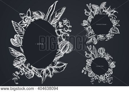 Floral Frames With Chalk Ficus, Iresine, Kalanchoe, Calathea, Guzmania Cactus Stock Illustration