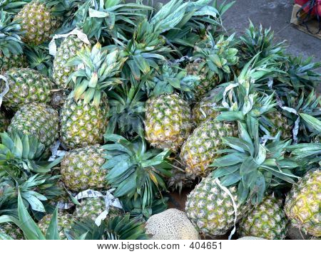 Pineapples For Sales