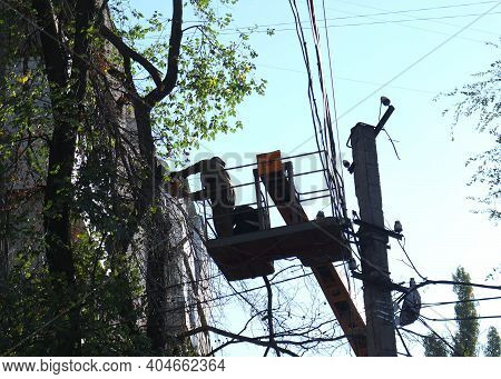 Old Dangerous Trees Are Being Removed In Cities. The Process Of Sawing A Tree Trunk. A Worker Of A C