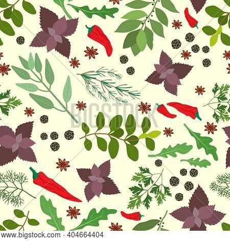 Vector Illustration Of Fresh Cooking Herbs And Spices In A Seamless Pattern With Oregano  Parsley  B