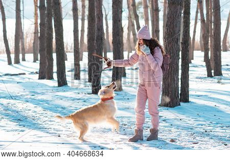Smiling Woman Playing With Her Pet Dog Golden Retriever In Winter Forest. Golden Retriever Run With