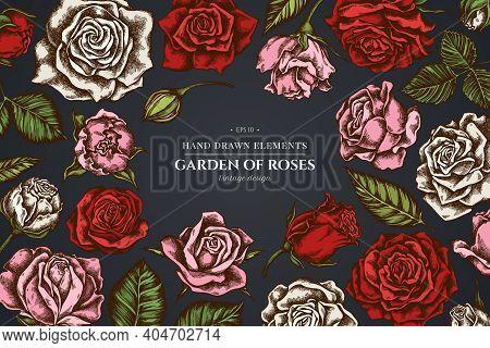 Floral Design On Dark Background With Roses Stock Illustration