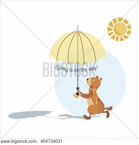 Groundhog Day. Groundhog Holding An Umbrella. Sunny Day. Spring Is On The Way. Marmot, Sun And Shado