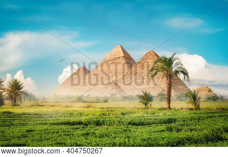 Egyptian Pyramids In Green Field At Foggy Morning