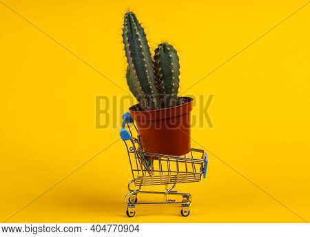 Shopping Concept. Supermarket Trolley With Cactus In Pot On Yellow Studio Background. Minimalism