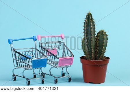 Shopping Concept. Cactus In Pot And Supermarket Trolleys On Blue Studio Background. Minimalism