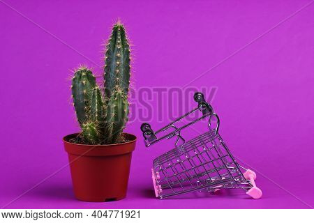 Shopping Concept. Supermarket Trolley With Cactus In Pot On Purple Studio Background. Minimalism