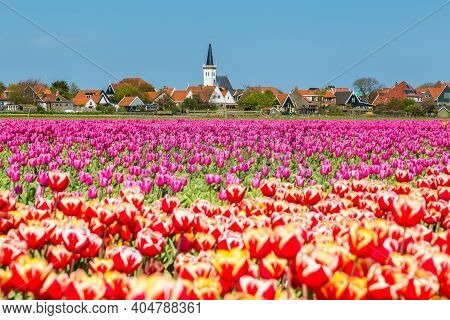 Village View Den Hoorn A Small Village On The Wadden Islands Texel In The Netherlands, With Colourfu