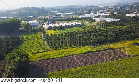 Top View Of Many Agricultural Fields. Clip. Many Varieties Of Vegetables And Fruits Are Grown In Agr