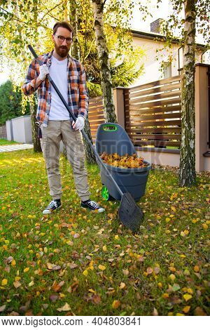 Autumn Garden Works, Collecting Autumn Leaves With Rake And A Plastic Container.