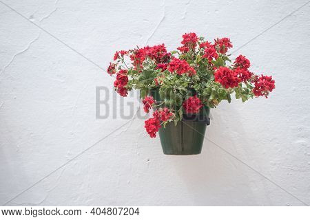 Flowerpot With Red Flower On A White Wall In An Andalusian Old Town Mijas