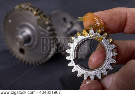 Coating The Gears With Grease. Accessories And Spare Parts For Industrial Machinery.