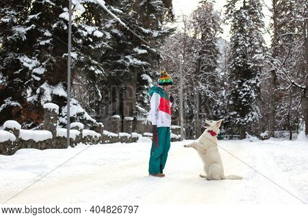 Girl With Shepherd Dog On The Snow, Winter Time