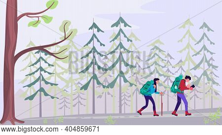 Man And Woman With Backpacks, Travelers Or Explorers Walking In Coniferous Forest. Concept Of Discov